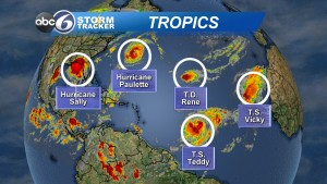 Tropicas Busy